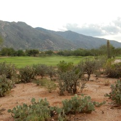 la-paloma-golf-course