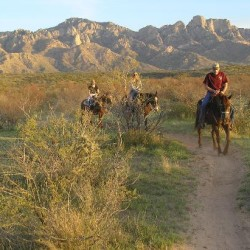 pusch-ridge-stable-sunset